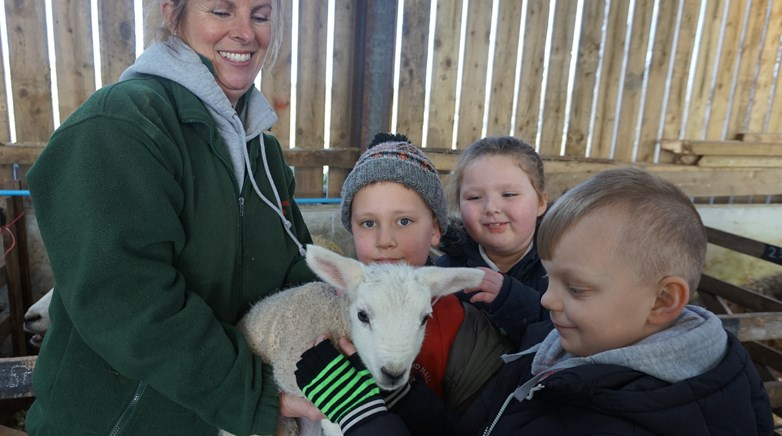 Year 3 visit the farm